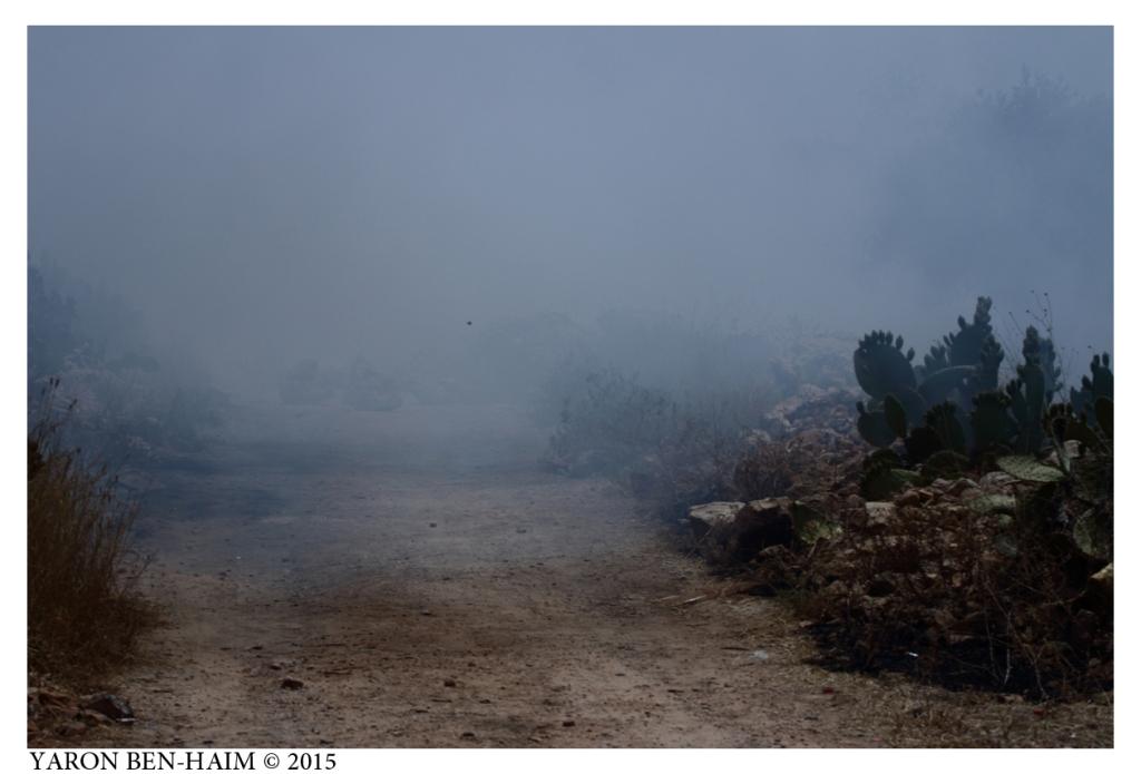 כדור גומי במעוף דרך ענן גז מדמיע